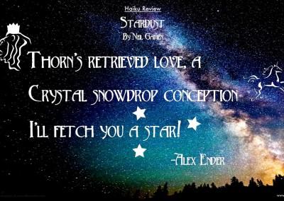 "Alex Ender reviews of ""Stardust"""