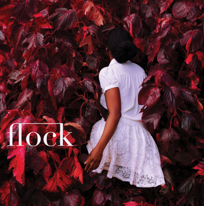 Flock 21: Vanishing Point Cover artwork